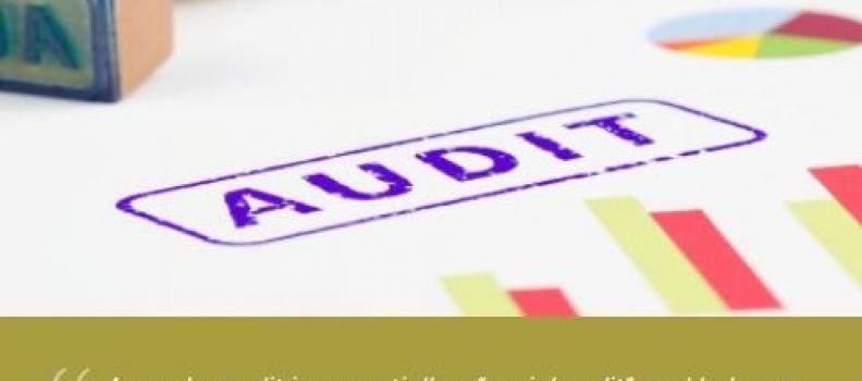 Až stovky tisíc korun utrácejí firmy za genderový audit. K čemu vlastně je?